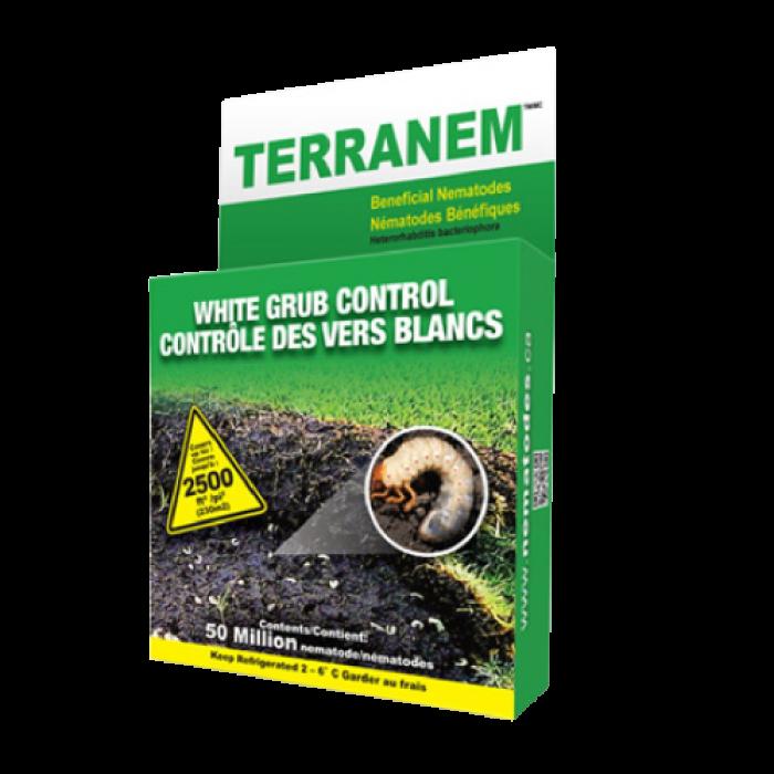 Nématodes Terranem (contrôle vers blancs)